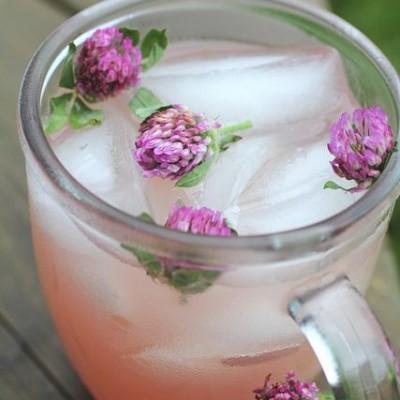 limonata trifoglio rosso